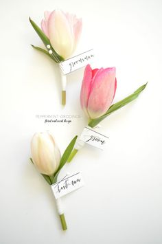 Pastel tulip boutonniere. Pastel Love! | Peppermint Weddings
