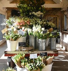 Spring has well and truly sprung at Daylesford 🐥 Beautiful displays and tempting Easter treats as far as the eye can see 😍 Thanks to…