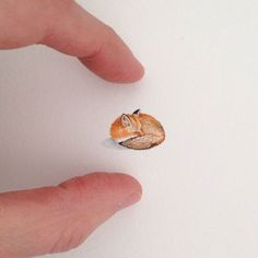Brooke Rothshank - miniature fox painting