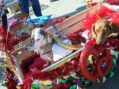 Barkus and Meoux Mardi Gras Parade, Shreveport, 2009