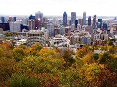 Go up the Mont-Royal The view from Mont-Royal -, it's entirely free of charge, and the Belvedere observatory offers amazing views of downtown Montreal and the mountains over on the south bank.