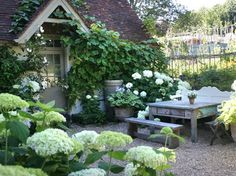 lush climbing vines, white hydrangeas, potted hosta, little peak over door....cozy
