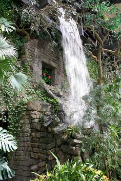 Cleveland Zoo Waterfall by FitchDnld, via Cleveland Zoo, Cleveland Rocks, Great Places, Places Ive Been, Places To Visit, Shaker Heights, The 'burbs, Travel Memories, Childhood Memories