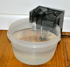 DIY cat/dog water fountain Cool idea.  My cats will probably like it too.  The cats and dog share the water bowls in the house.  This also eliminates the need for a water line to the fountain like the ones you buy.