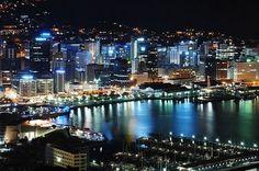 Wellington, New Zealand. that is so awesome Wellington City, Wellington New Zealand, Holidays Around The World, Around The Worlds, New Zealand Houses, Kiwiana, Australia, South Island, City Lights