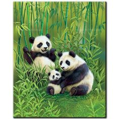 Panda's & Cub The Animals, Baby Animals, Panda Family, Cute Panda Wallpaper, Panda Wallpapers, Panda Love, Tier Fotos, Cross Paintings, Animal Drawings