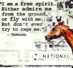 I am a free spirit. Either admire me from the ground, or fly with me....but don't ever try to cage me.