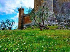Toscana 🇮🇹 . . . #castle #worldplaces #worldcaptures #travelgram #wonderful_places #worlderlust #beautifuldestinations  #wanderlust #aPlaceToRemember #ourplanetdaily  #bestvacations  #igworldclub #lonelyplanet #instatrip #instatravel #natgeo #travel #italy #visititaly  #ig_italia #italy_vacations #italian_places
