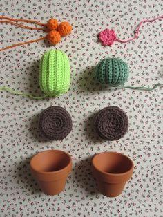 Project Mini Cactus - TheFunkyFox