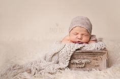 Baby Bee Photography has been offering high end photography services in the Edmonton area for over 8 years. Specializing in Custom Newborn, Baby, Cakesmash Maternity and Family Photography. Newborn Photography, Family Photography, Family Memories, Photography Services, Newborns, Pregnancy Photos, Photo Ideas, Bee, Maternity