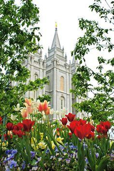 LDS Salt Lake Temple canvas print on etsy