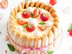 Charlotte façon tiramisu aux fraises • Hellocoton.fr