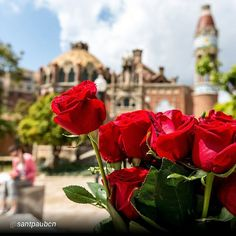 Feliç diada de Sant Jordi! Gaudiu del dia!   Today is Saint George's Day, is a popular festive day when book and rose stalls, and, above all, floods of people, take over the streets of all Catalan towns and villages. The celebration could not be simpler: the ritual consist of going for a walk and buing a rose, a book or both to give to loved ones, family members and friends. Although is not a public holiday, the day and the essential walk fill the streets ans squares, making it a unique…