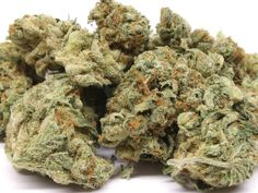 Buy OG Kush is an American marijuana classic, a Southern California original with some of the highest THC levels in the world. With a sativa/indica. Cannabis Vape, Cannabis Seeds Online, Cannabis Seeds For Sale, Cannabis Plant, Medical Marijuana, Growing Marijuana Indoor, Cannabis Growing, Thunder, Autoflowering Seeds