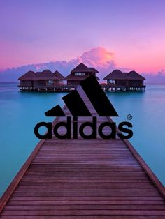 adidas wallpaper purple - Google Search