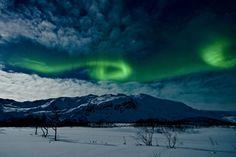 northern-lights-in-tromsø-norway-andi-gentsch