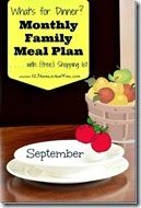Meal Planner - September - not gluten free but some great ideas to try and convert.