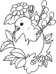 A Chick, Flowers, and Pussy Willows