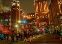 Holiday Lights Walking Tours at Anheuser-Busch Brewery | stlparent.com