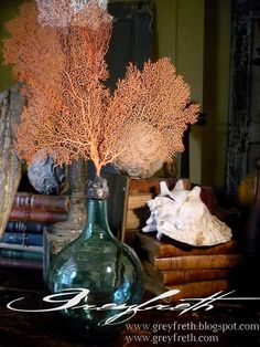 Isabeau Grey: Ethereal sea fan crowning an antique bottle of beautiful green glass.