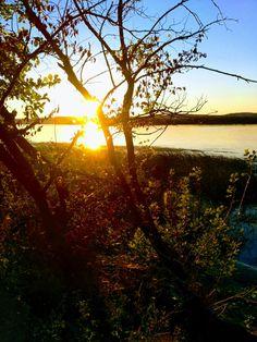 Закат.Волга. Деревья
