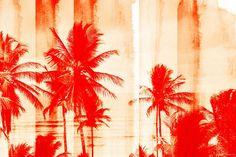 Dende Coast - Art Print on Premium Wrapped Canvas