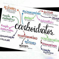🔹◾ Resumo de biologia sobre carboidratos. . . . . . . . . 🔹◾Sigo estudando bioquímica ainda, pois essa parte da matéria parece não ter fim… Student Studying, Student Life, Medicine Student, Biology Lessons, Study Organization, Nursing School Tips, Lettering Tutorial, Hand Lettering, School Notes