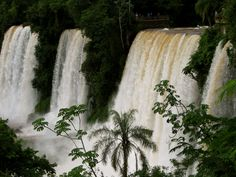 Unzählige Wasserfall-Kaskaden stürzen, umgeben von einem riesigen Vorhang grüner Urwald-Gewächse, donnernd in die Tiefe.