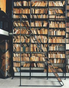 Famous bookshelf at Maison de Verre