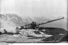 German coastal artillery in Lapland, Finland, 1942-1943 Photographer Fraß Source German Federal Archive Identification Code Bild 101I-102-0894-23 Added By C. Peter Chen