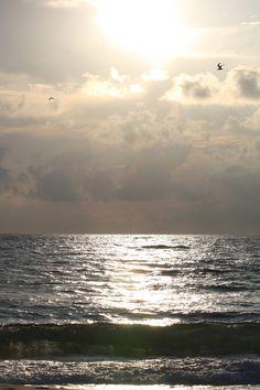 Inspiring Things, Sunshine State, West Palm Beach, Florida Beaches, Grandparents, Sunrise, Singer, Hands, Memories