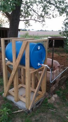 Pig water gravity feed