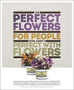 Print ad created for Burpee Home Gardens in 2013.