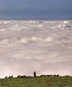 روستای فیلبند یکی از زیباترین روستاهای مناطق جنوبی بابل و آمل است که مسیر دسترسی به آن از جاده هراز، 25 کیلومتری جنوب آمل به سمت شرق و به سمت سنگچال جدا می شود. فیلبند مرتفع ترین روستای ییلاقی حوزه مركزی مازندران است كه در جنوب بابل در بخش بندپی غربی واقع شده است .ارتفاع آن از سطح دریا حدود 2700 مـــتر است. این روستا بر فراز ابر ها قرار دارد به نحوی كه اغلب روزها ابر ها همچون دریایی آبی و آرام تا بی كرانه ها چشم را می نوازد و خیره می كند.