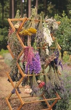Garden Landscaping Summer never fades when you air-dry garden blooms to preserve them for year-round display. - Summer never fades when you air-dry garden blooms to preserve them for year-round display. Culture D'herbes, Witchy Garden, Dry Garden, Hillside Garden, Herbs Garden, Garden Sheds, Fruit Garden, Garden Pests, Summer Garden