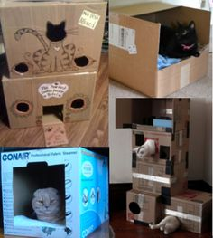 cardboard box castle for cat - Penelusuran Google   Toys For my ...
