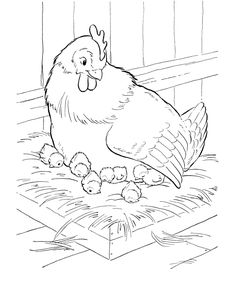 Farm Animal Coloring Pages | Mother hen sitting on her nest Coloring Page and Kids Activity sheet | HonkingDonkey