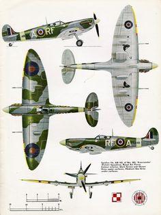 Spitfire Vb, Dark Green and Ocean Gray on top, Medium Sea gray on bottom.