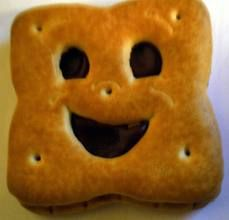 bn bn biscuits - Google Search