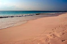 Pegadas na areia rosa da praia bahamiana | Foto: Mike's Birds.