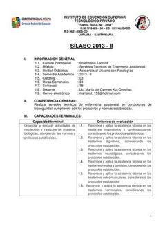 SILABO 2013 - ATENCION AL USUARIO CON PATOLOGIAS