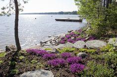 Pääteemana ovat olleet kotimaisuus, ekologisuus, kestävä kehitys ja käsityötaide. Honkarakenteen painumaton Honka FusionTM -hirsi ja Hatrick Patteri -ikkunat. Suomalainen kollektiivinen muisti näkyy mökin muotojen, muotoilun ja materiaalien kielessä. Luonnon läsnäolo tulee ulkoa sisälle asti. Lokki … Garden Cottage, House In The Woods, Landscape Architecture, Finland, Garden Landscaping, Water, Plants, Outdoor, Front Yard Landscaping