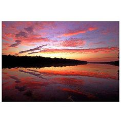 Trademark Art On Certain Mornings Canvas Art by CATeyes, Size: 22 x 32, Multicolor