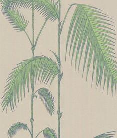 vison-palmeras.