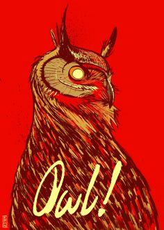 Owl! by Gilles Vranckx