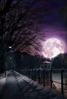 Supermoon on a cold wintery night.