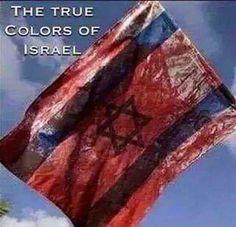 La verdadera bandera hipocrita