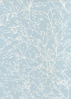 Zola wallpapers from Anna French 66 euros