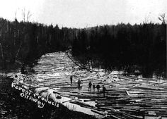 Photos From Michigan's Lumber History