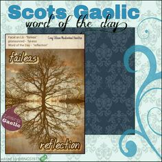 Scottish Gaelic Phrases, Scottish Words, Scottish Quotes, Gaelic Words, Celtic Druids, Celtic Music, Wicca Witchcraft, Kilts, Word Of The Day